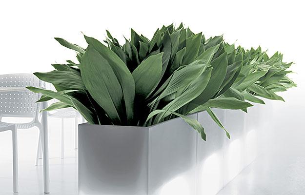 Planter og utemøbler fra Sitting Scandinavia